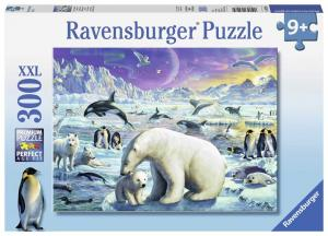 Ravensburger Pussel Samling av Polar djur 300 bitar XXL