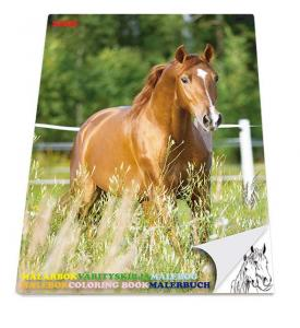 Sense Målarbok Hästar 36 sidor