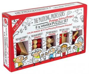 The Puzzle Club - Set of 5 - Professor's Wooden Puzzle set
